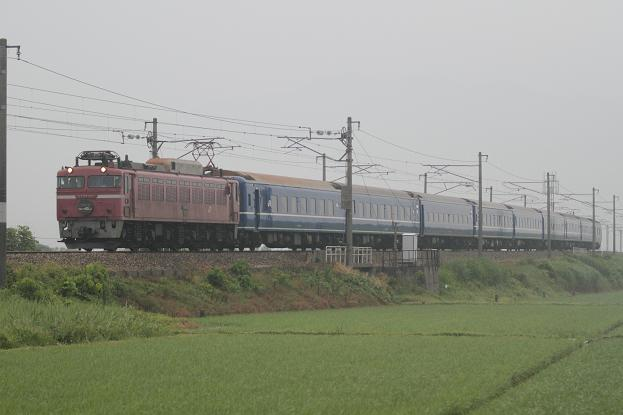 DPP_0401.JPG