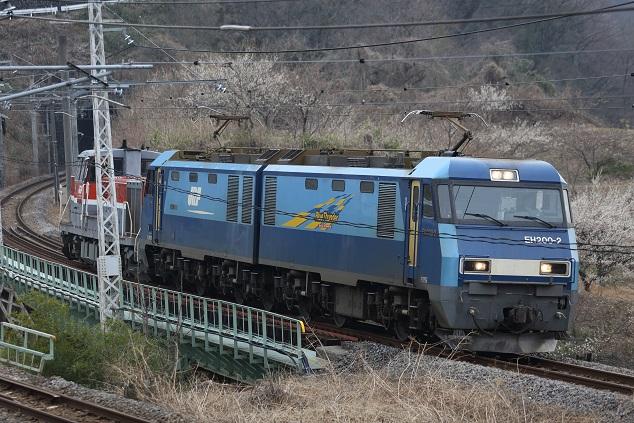 DPP_3284.JPG