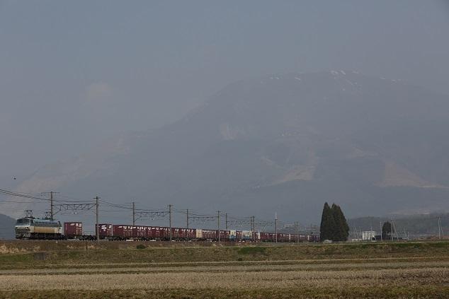 DPP_4637.JPG