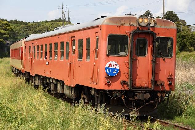 DPP_5302.JPG