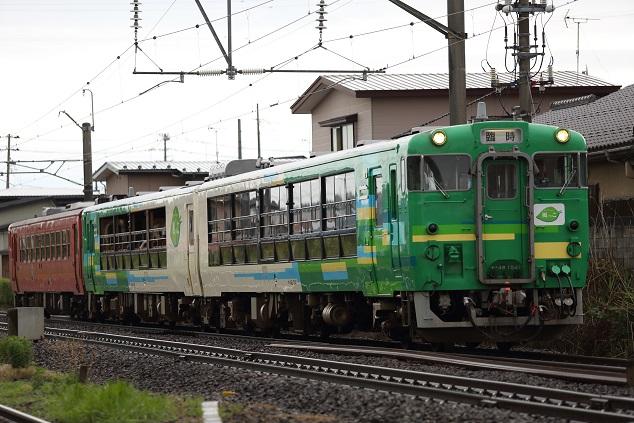 DPP_5357.JPG